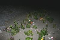 浜辺に供物をおいて…