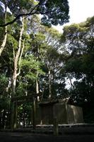 堅田神社です