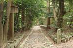 江神社があります
