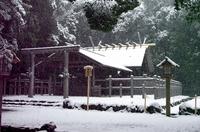 本殿も雪景色