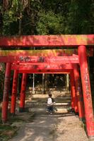 赤い鳥居の稲生神社