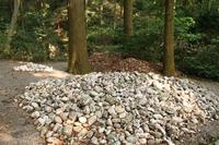 白石がいっぱい!