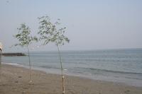 二見浦海水浴場