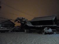 yukibi1.jpg