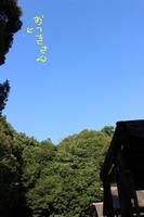 2IMG_4034.jpg