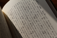 2IMG_6968.jpg