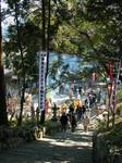 太江寺の初観音