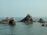 夫婦岩にはウミウ