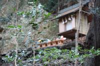 yamakami1.jpg