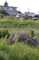 saburo4.jpg